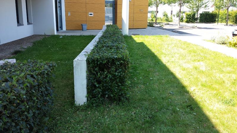 Entretien espaces verts evs 44 votre partenaire espace for Entretien espace vert particulier