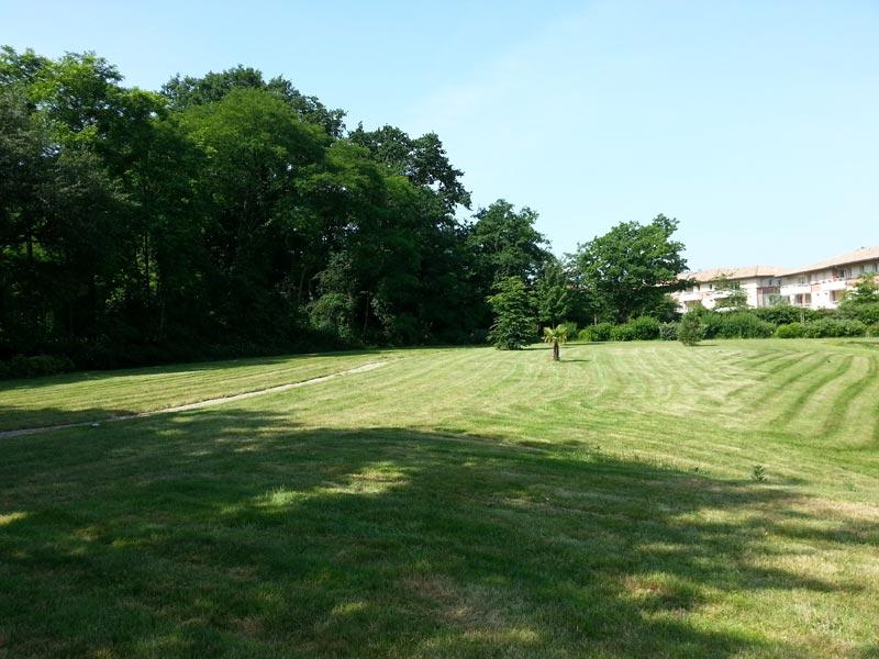 Entretien espaces verts evs 44 votre partenaire espace for Entretien jardin nantes