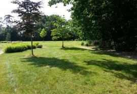 Entretien des espaces verts d'un syndic de co-propriété
