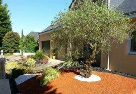 Aménagement du jardin extérieur par EVS 44